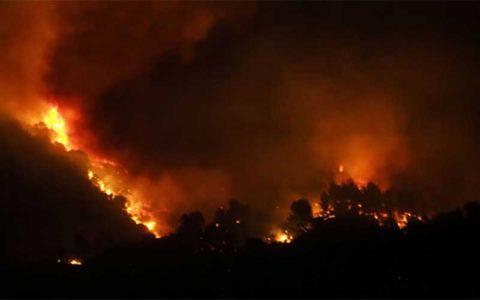جنگلهای فرانسه طعمه آتشسوزیهای طبیعی