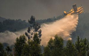 جنگل های اسپانیا بار دیگر دچار حریق شد