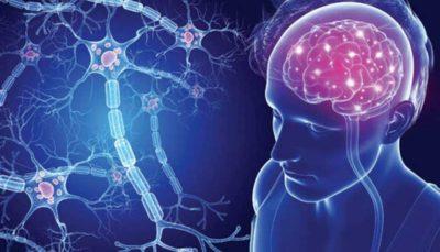نرمافزاری برای حل مشکل حافظه در بیماران اماس