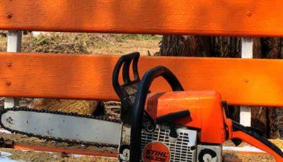 ضرورت تلاش برای خودداری از قطع درختان هنگام ساخت و ساز