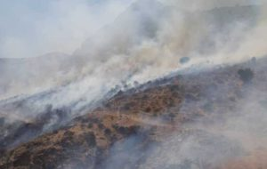 بیتوجهی گردشگران، پارک کوهستانی دراک شیراز را به آتش کشید
