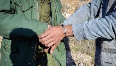 پایان کار شکارچیان غیرمجاز با ۱۲ ساعت تعقیب نامحسوس