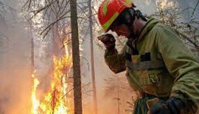 آتشسوزی در بیشهزارهای استرالیا همچنان تهدیدکننده است