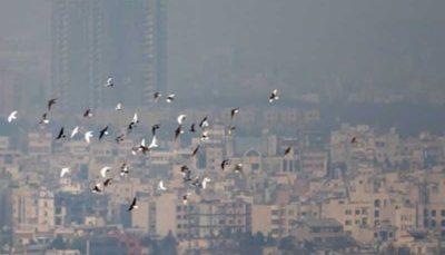 آیا مقصر آلودگی هوای ورامین هم طرح ترافیک تهران است!