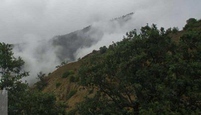 امیدها و آرزوهای جنگلهای جهانی هیرکانی در گرو یک تصمیم