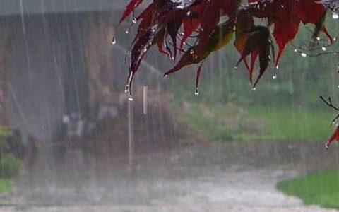 بارندگی در برخی استانها، از فردا