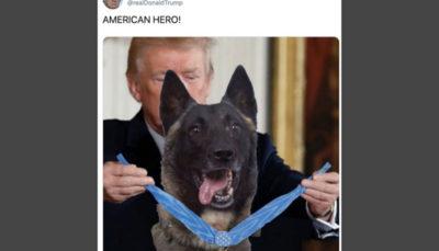 ترامپ: بزرگترین قهرمان کشتن البغدادی آن سگ بود نه من
