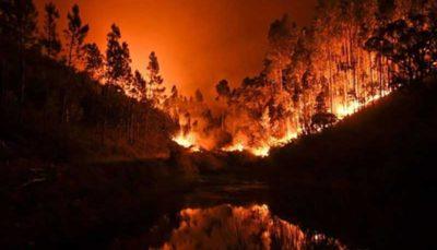 تشدید آتشسوزیها و اعلام وضعیت اضطراری در ۲ ایالت استرالیا