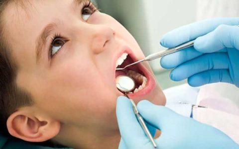 رتبه 14 «دندانپزشکی ایران» در جهان