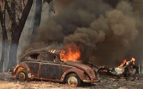 تشدید آتشسوزیهای جنگلی در استرالیا و اعلام وضعیت اضطراری