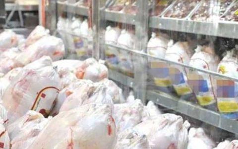 توقیف هفت تن مرغ فاسد قبل از توزیع در بازار