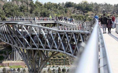 جانمایی دیوارهای شیشهای روی پل طبیعت برای جلوگیری از خودکشی