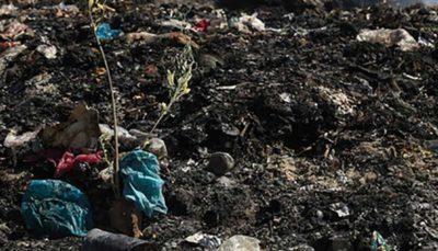 راه اندازی ایستگاههای چندگانه تفکیک زباله تا دو ماه آینده