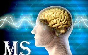 سلولهای بنیادی، کلید درمان بیماری MS