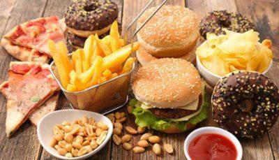 چرب موجب اختلال در ارتباط روده با سایر بدن می شود غذاهای چرب موجب اختلال در ارتباط روده با سایر بدن می شود