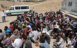 پلیس وارد دره فرحزاد شد؛ جمعآوری حدود ۲۲۰ معتاد متجاهر