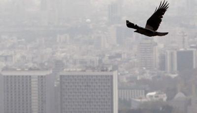 افزایش آلودگی هوا در پایتخت