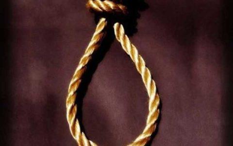 تمساح خلیج فارس اعدام شد