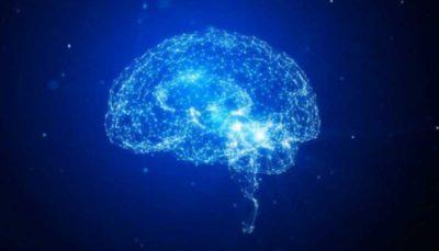 محرومیت شدید دوران کودکی موجب کوچک شدن اندازه مغز می شود