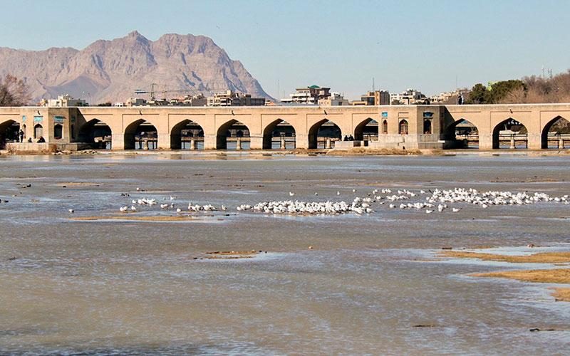 10 3 سد زایندهرود, محیط زیست, اصفهان