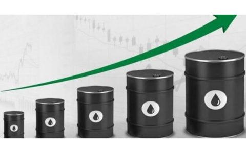 ثبات قیمت نفت به امید کاهش تولید اوپک