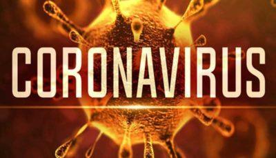 خبر ابتلای دانشجویان دانشگاه تربیت مدرس به ویروس کرونا تکذیب شد ویروس کرونا, کرونا, دانشگاه تربیت مدرس