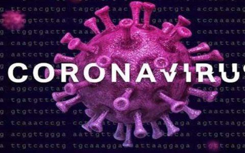 دوره نهفتگی ویروس کرونا تا ۲۷ روز است
