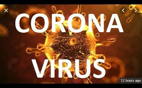 راز و رمزهای یک ویروس؛ چرا درآفریقا خبری نیست؟!