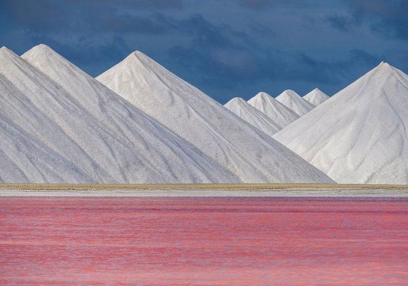 عکسهای نفس گیر از مسابقات عکسهای طبیعت جهان (تصاویر)
