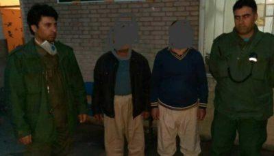 عوامل کشتار خرس قهوهای در ارومیه دستگیر شدند