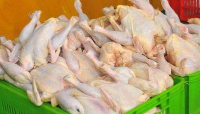 مرغ تازه در میادین میوه و تره بار به زیر ۱۰ هزار تومان رسید