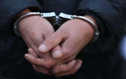 متهم کلاهبردار به کشور بازگردانده شد