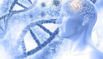 زوال عقل ریسک ابتلا به بیماری کووید ۱۹ را افزایش می دهد ژن زوال عقل ریسک ابتلا به بیماری کووید ۱۹ را افزایش می دهد