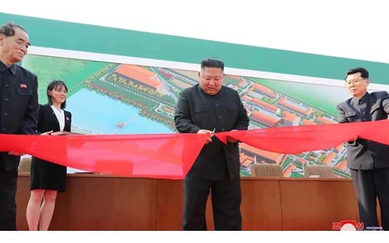 000 کودشیمیایی, کیم جونگ اون, پیونگ یانگ