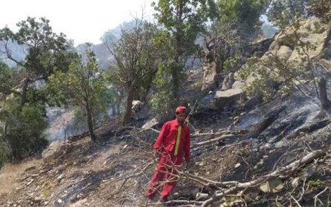آتش به جان جنگلهای اطراف گرگان افتاد