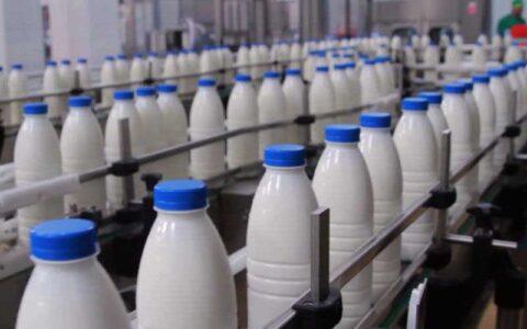 افزودن وایتکس در شیر صحت ندارد شیر, اثر ضد میکروبی, وایتکس