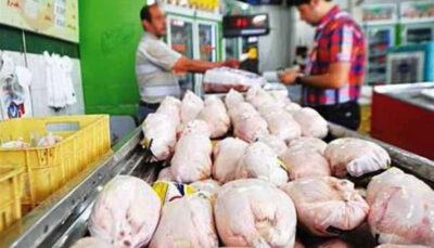 توزیع نامحدود مرغ منجمد ۱۳۵۰۰ تومانی آغاز شد مرغ منجمد, تنظیم بازار, کاهش قیمت