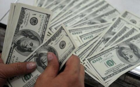 قیمت رسمی یورو افزایش یافت/نرخ دلار ثابت ماند