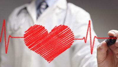 کبد و ارتباط آن با سلامت قلب