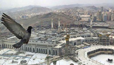 تعويض جامه خانه خدا در شب عرفه مسجدالحرام, پرده كعبه, کسوه