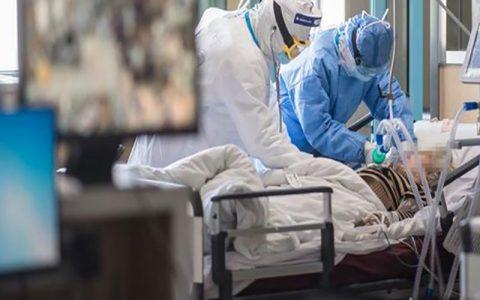 شناسایی ۲۶۳۶ بیمار جدید کرونا جان باختگان, سیما سادات لاری