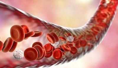 چه تعداد از بهبودیافتگان کرونا پلاسما اهدا کردهاند؟ بهبودیافتگان کرونا, سازمان انتقال خون ایران, اهدای پلاسما