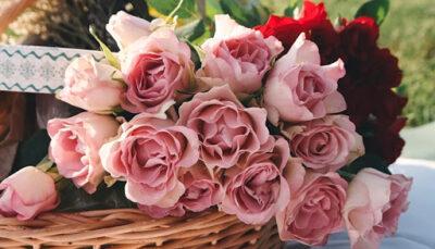 """گل آنلاین """"آی لیلیوم"""" سفارش در کوتاه ترین زمان"""