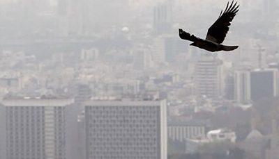 آلودگی هوا طی ۲۴ ساعت گذشته در تهران شاخص کیفیت هوا, هوای تهران
