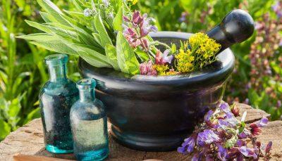 عصارههای گیاهی موثر برای درمان دیابت بیماری دیابت, گیاهان دارویی