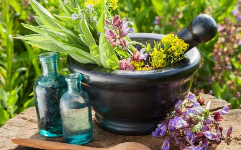 عصارههای گیاهی موثر برای درمان دیابت