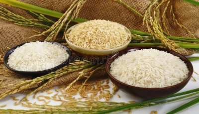 مصرف برنج در چه صورت میتواند منجر به مرگ شود؟ برنج, متخصصان تغذیه, رژیمهای غذایی