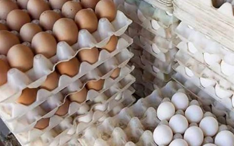 نرخ هر شانه تخم مرغ به 18 هزار تومان رسید ستاد تنظیم بازار, قیمت تخم مرغ