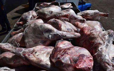 کشف 2 تن گوشت فاسد در پایتخت پایتخت, گوشت های فاسد, سازمان دامپزشکی