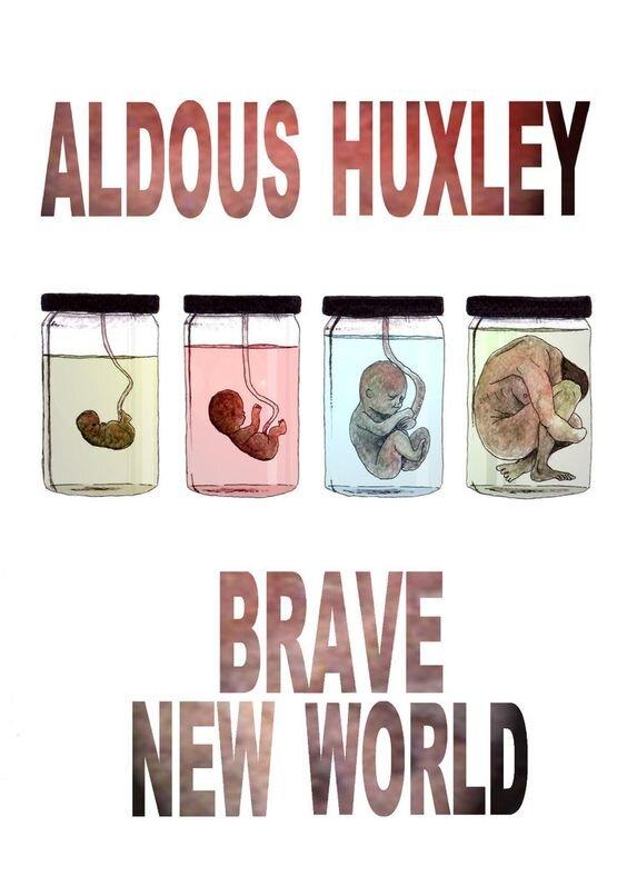4473515 کتاب, آلدوس هاکسلی, هویت انسانی